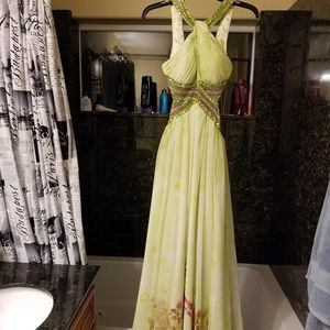 Dresses & Skirts - Gown